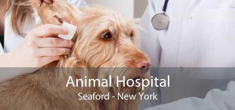 Animal Hospital Seaford - New York