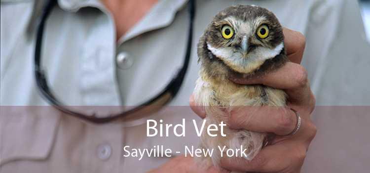 Bird Vet Sayville - New York