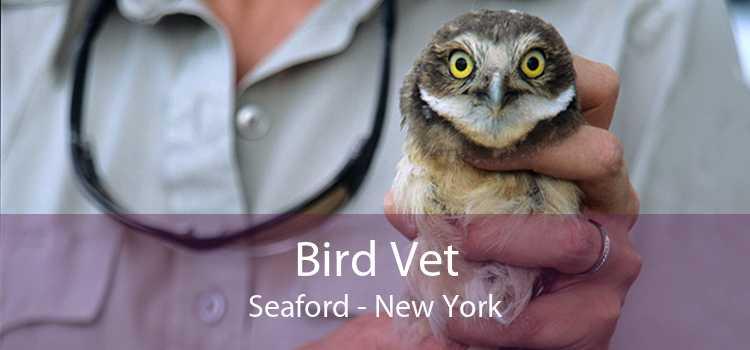 Bird Vet Seaford - New York