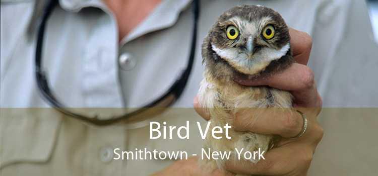 Bird Vet Smithtown - New York