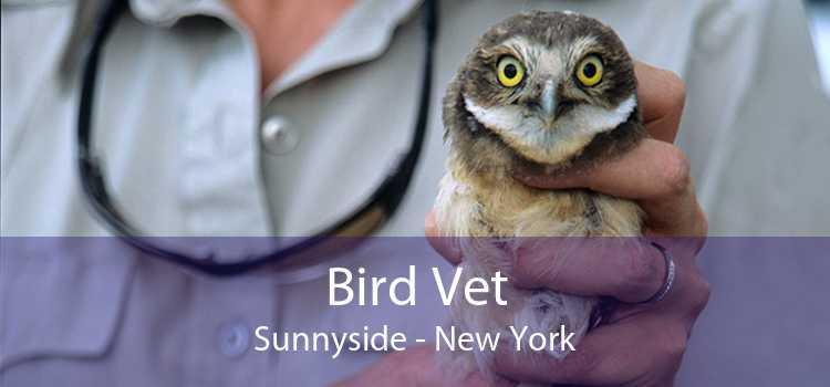 Bird Vet Sunnyside - New York