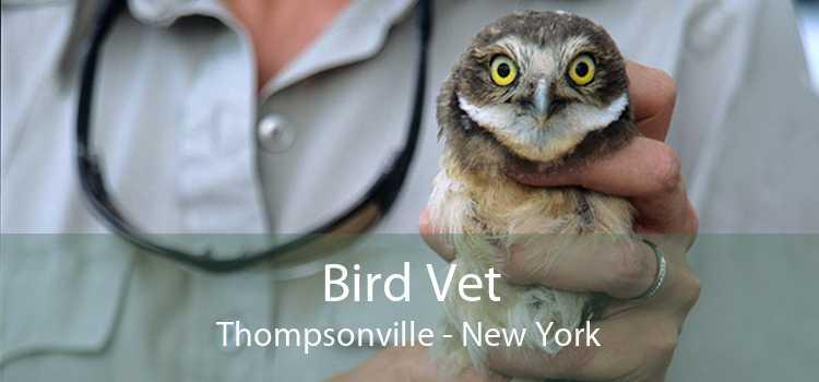 Bird Vet Thompsonville - New York