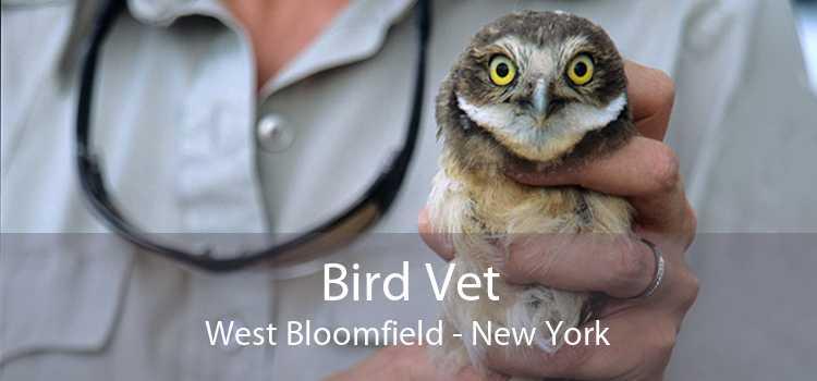 Bird Vet West Bloomfield - New York