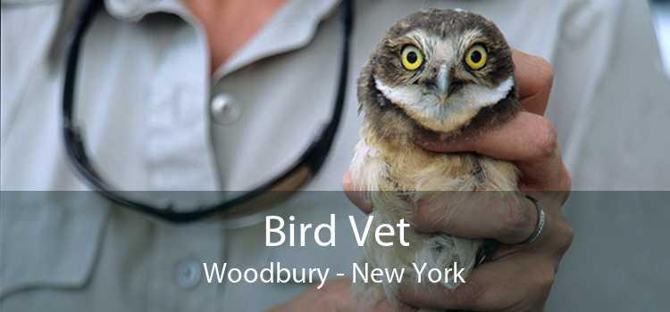 Bird Vet Woodbury - New York