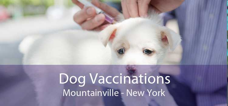 Dog Vaccinations Mountainville - New York