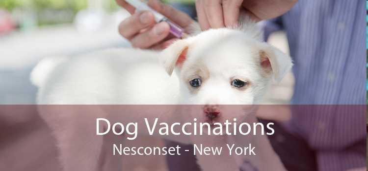 Dog Vaccinations Nesconset - New York