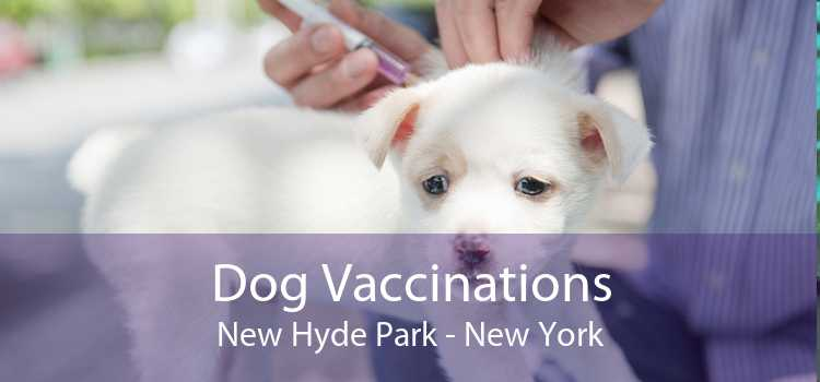 Dog Vaccinations New Hyde Park - New York