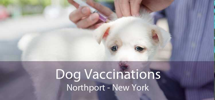 Dog Vaccinations Northport - New York