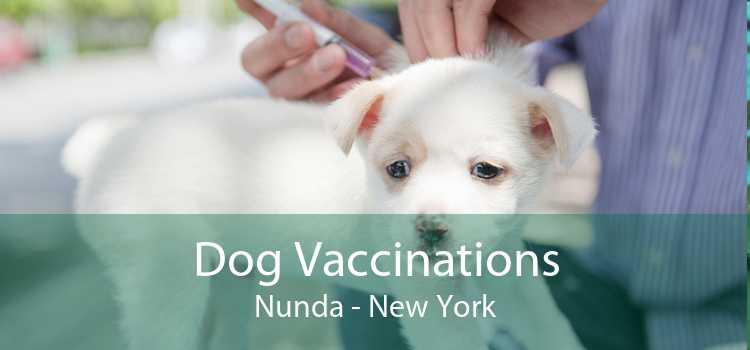 Dog Vaccinations Nunda - New York