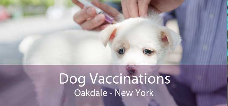 Dog Vaccinations Oakdale - New York