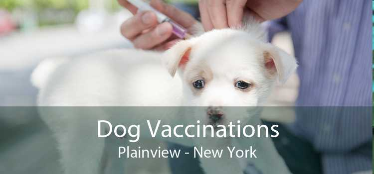 Dog Vaccinations Plainview - New York