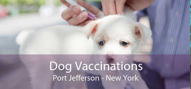 Dog Vaccinations Port Jefferson - New York