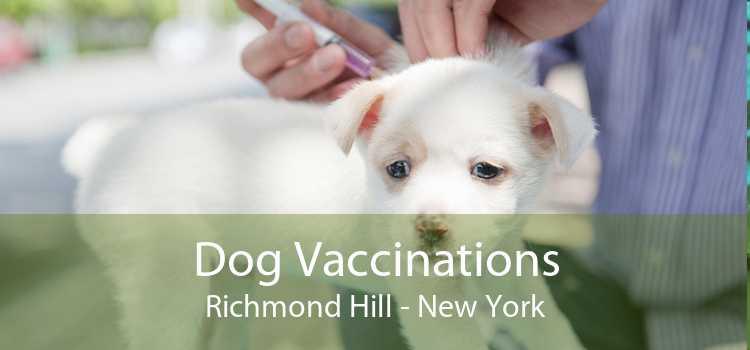 Dog Vaccinations Richmond Hill - New York