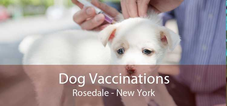 Dog Vaccinations Rosedale - New York