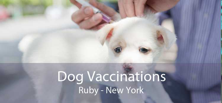 Dog Vaccinations Ruby - New York