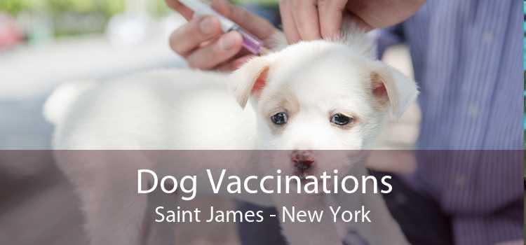 Dog Vaccinations Saint James - New York