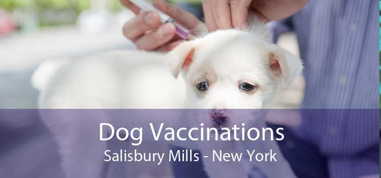 Dog Vaccinations Salisbury Mills - New York