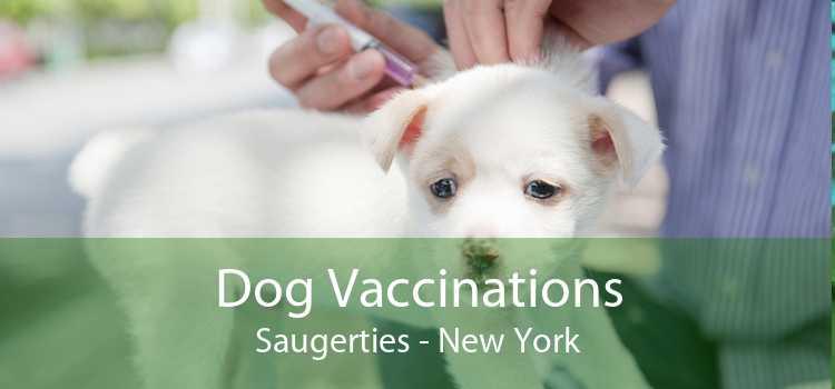 Dog Vaccinations Saugerties - New York
