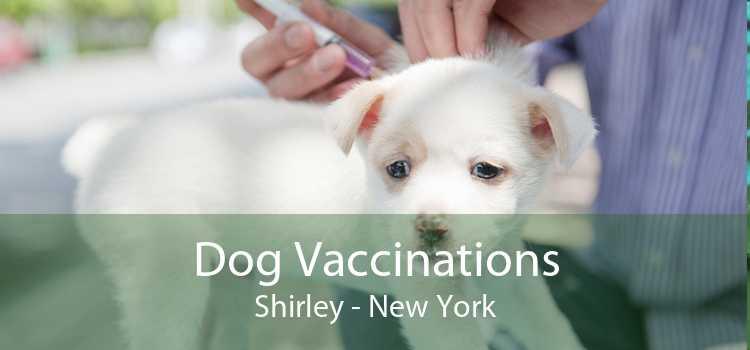 Dog Vaccinations Shirley - New York