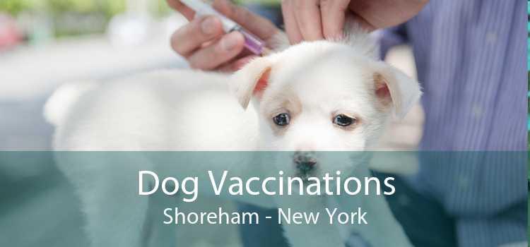Dog Vaccinations Shoreham - New York