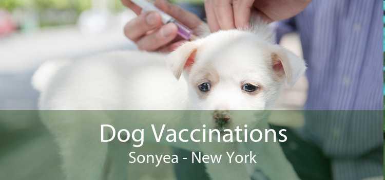 Dog Vaccinations Sonyea - New York