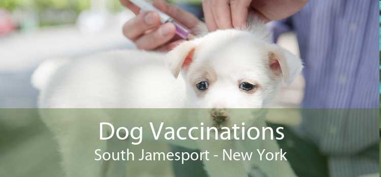 Dog Vaccinations South Jamesport - New York
