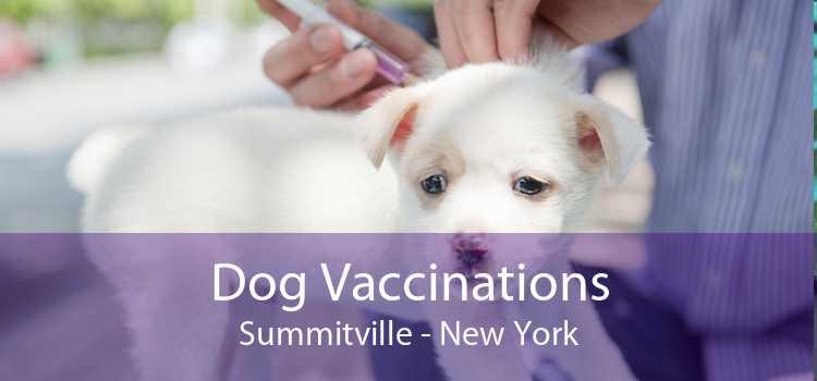 Dog Vaccinations Summitville - New York