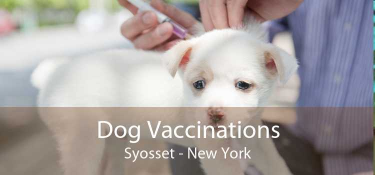 Dog Vaccinations Syosset - New York