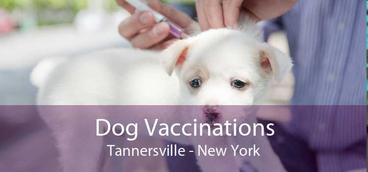 Dog Vaccinations Tannersville - New York
