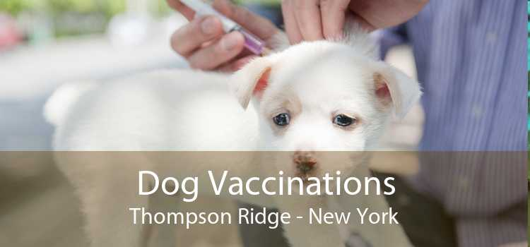 Dog Vaccinations Thompson Ridge - New York