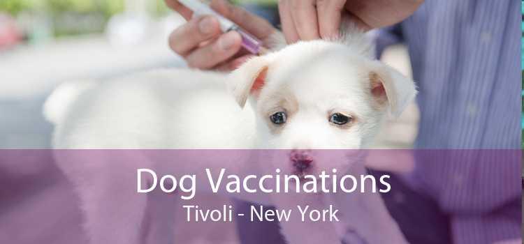 Dog Vaccinations Tivoli - New York