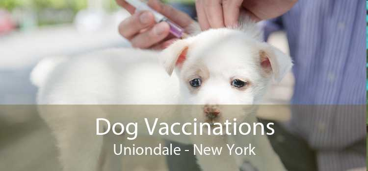 Dog Vaccinations Uniondale - New York
