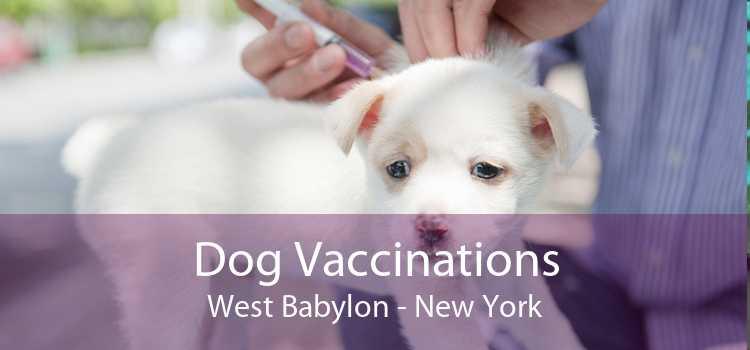 Dog Vaccinations West Babylon - New York