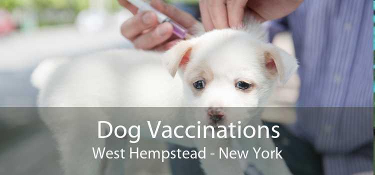 Dog Vaccinations West Hempstead - New York