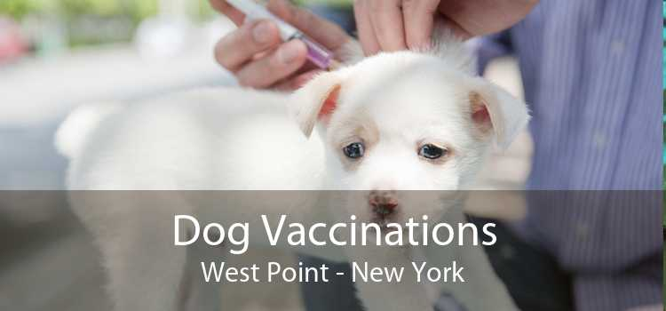 Dog Vaccinations West Point - New York