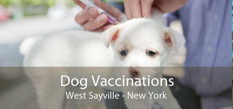 Dog Vaccinations West Sayville - New York