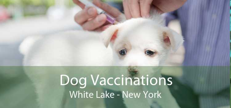 Dog Vaccinations White Lake - New York