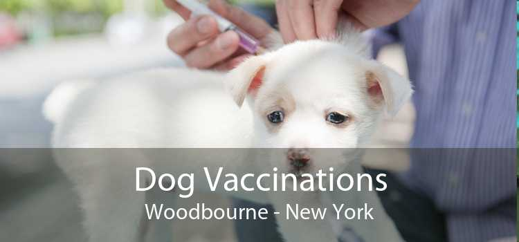 Dog Vaccinations Woodbourne - New York