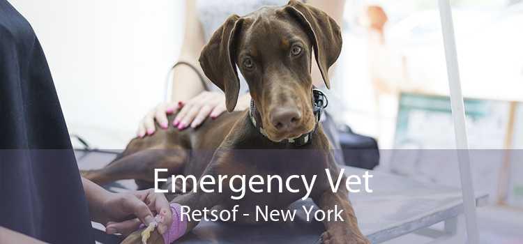 Emergency Vet Retsof - New York