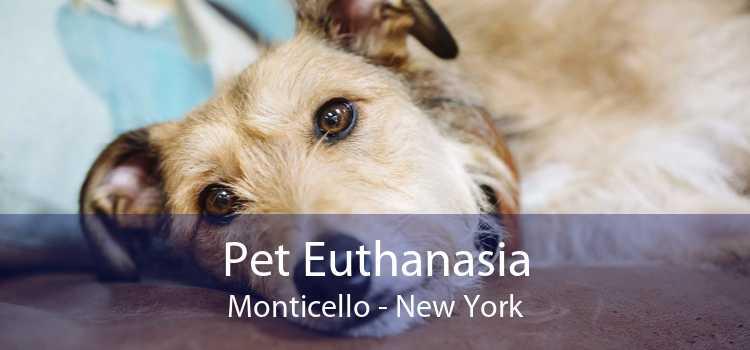 Pet Euthanasia Monticello - New York