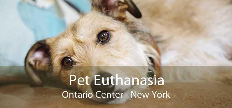 Pet Euthanasia Ontario Center - New York