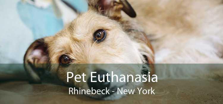 Pet Euthanasia Rhinebeck - New York