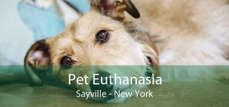 Pet Euthanasia Sayville - New York