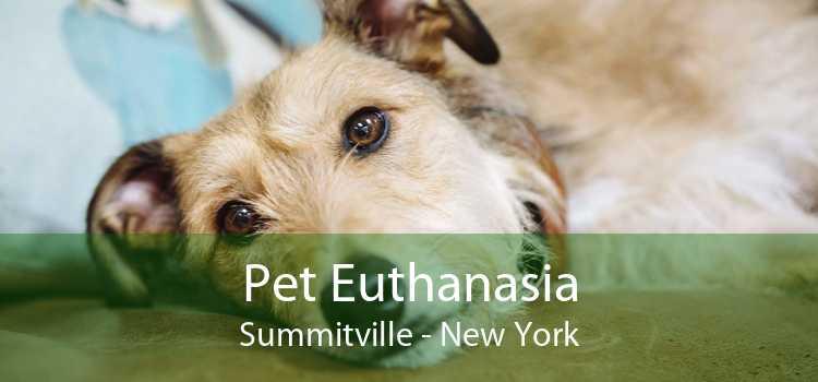 Pet Euthanasia Summitville - New York