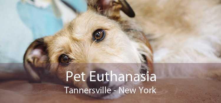 Pet Euthanasia Tannersville - New York