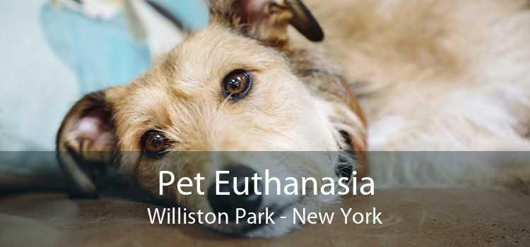 Pet Euthanasia Williston Park - New York