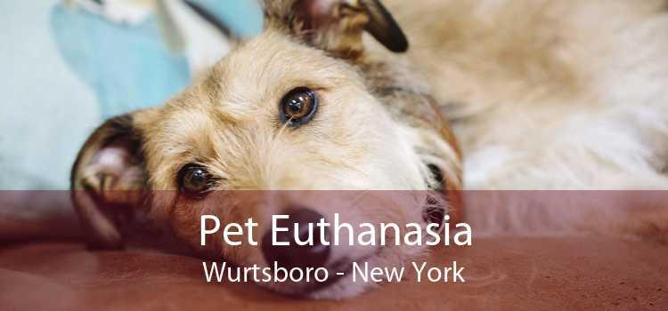 Pet Euthanasia Wurtsboro - New York