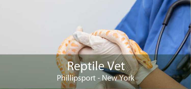 Reptile Vet Phillipsport - New York