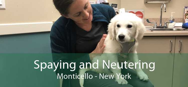 Spaying and Neutering Monticello - New York