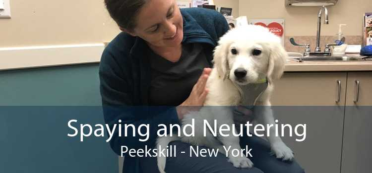 Spaying and Neutering Peekskill - New York